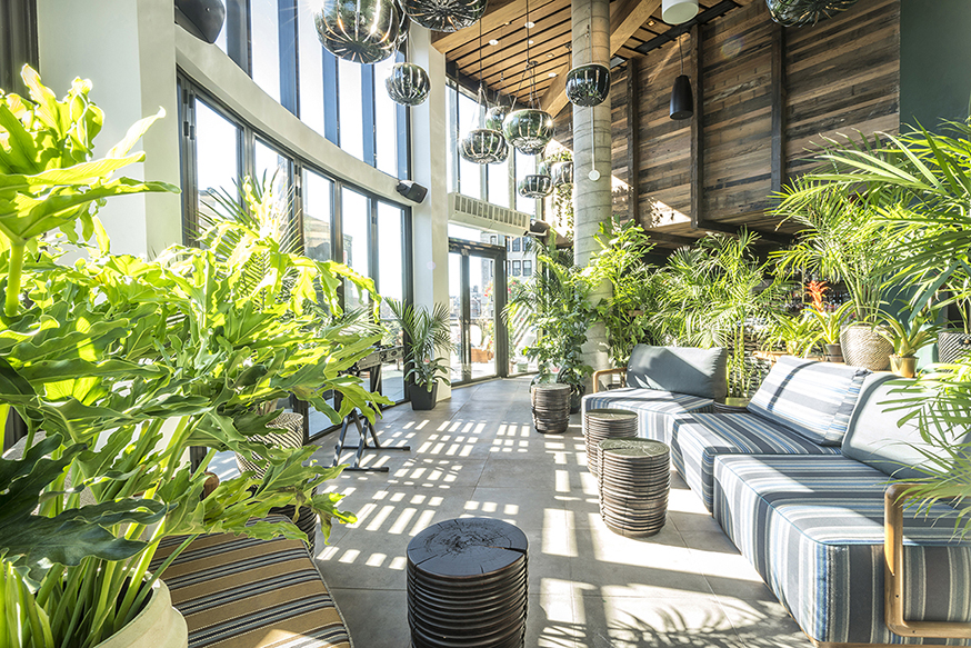 A bright photo of the Good Behavior Rooftop, filled with green plants, at the MADE hotel in New York City.