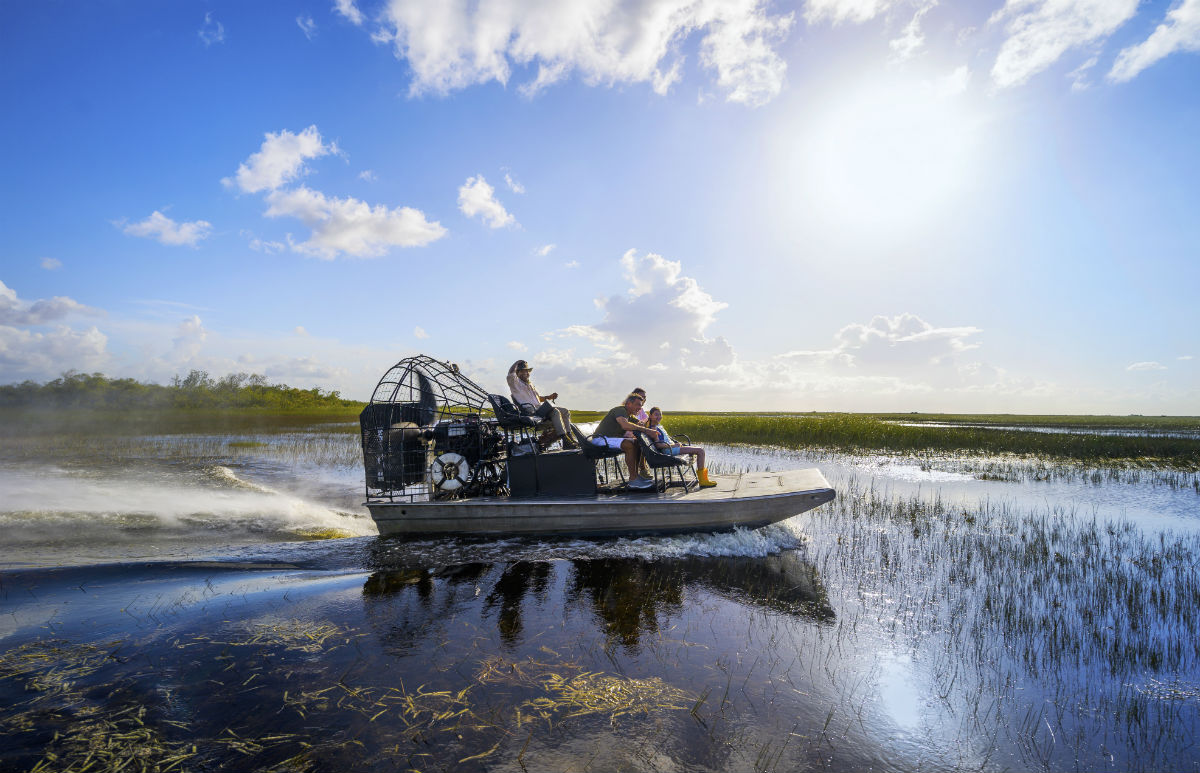 An airboat safari in the Everglades