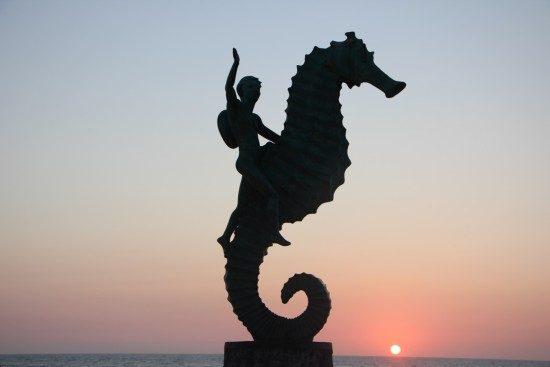 puerto-vallarta-seahorse-image-by-jeffrey-james-keyes-1-550x367